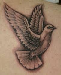Güvercin Dövmesi
