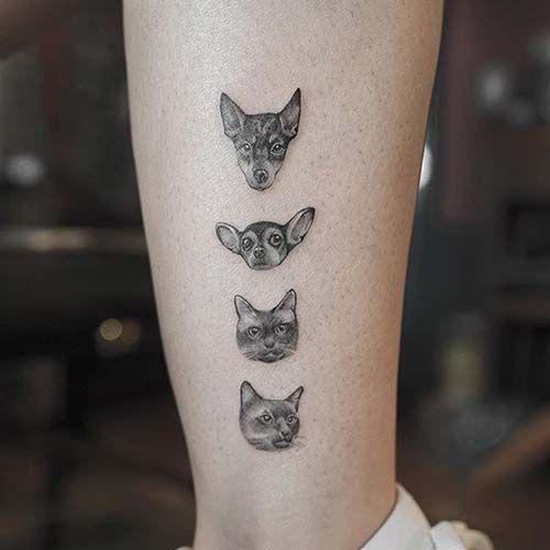 Kedi Köpek Dövmesi